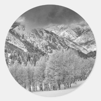 Les arbres de plantes vertes et d'Aspen dans une Sticker Rond