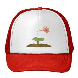 Les arbres d'usine de jour de la terre font un casquettes