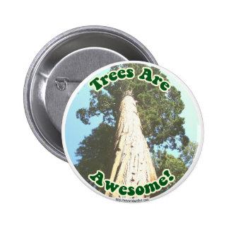 Les arbres sont impressionnants ! pin's