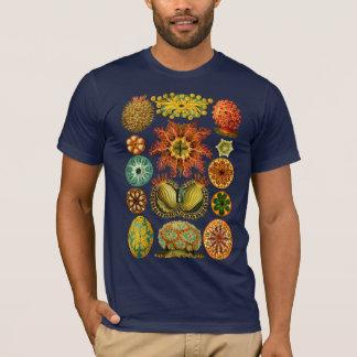 Les ASCIDIACEA de HAECKEL - T-shirt