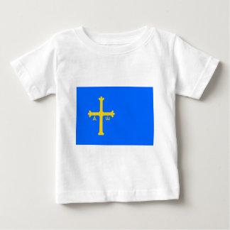 Les Asturies, une région celtique T-shirt