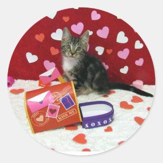 Les autocollants de Valentine du bandit (chaton