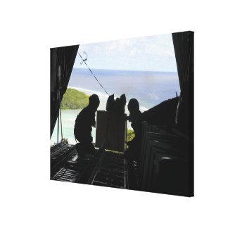 Les aviateurs éliminent une palette des toiles tendues