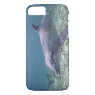 Les Bahamas, île de Bahama grande, port franc, Coque iPhone 7