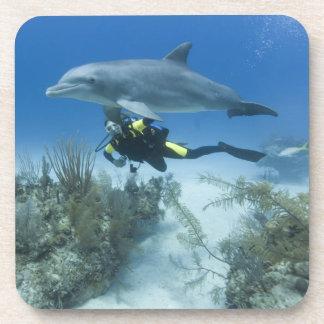 Les Bahamas, île de Bahama grande, port franc, sca Dessous-de-verre