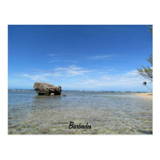 Les Barbade - Côte Est 1 Cartes Postales