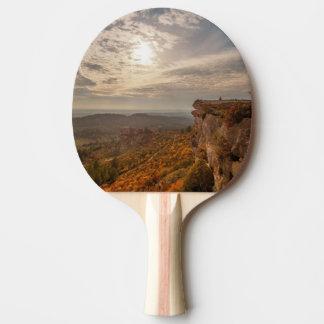 Les Baux-De-Provence, France Raquette De Ping Pong