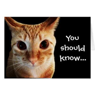 Cartes Les beurres vous aime carte de note drôle de chat