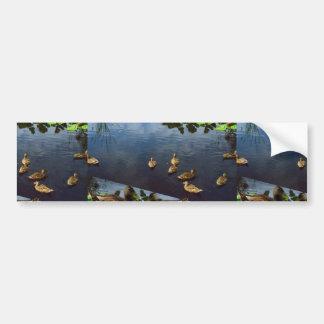 Les CANARDS accumulent l'animal familier Autocollant Pour Voiture