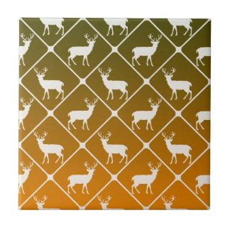 Les cerfs communs modèlent sur l'arrière - plan de petit carreau carré