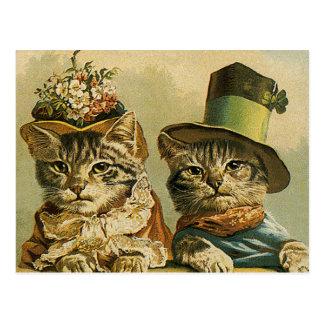 Les chats drôles victoriens vintages dans des chap carte postale
