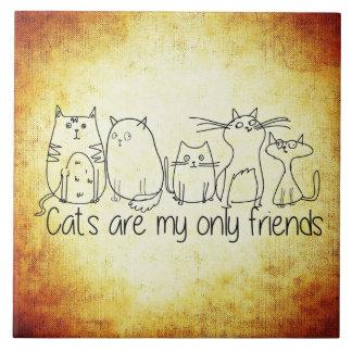 Les chats sont mes seulement amis grand carreau carré