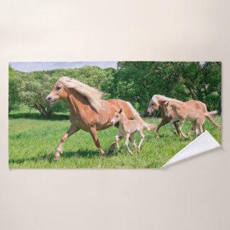 Les chevaux de Haflinger avec les poulains mignons