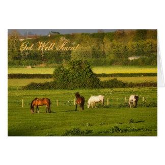 Les chevaux frôlant à la tonnelle Hinton, Carte De Vœux