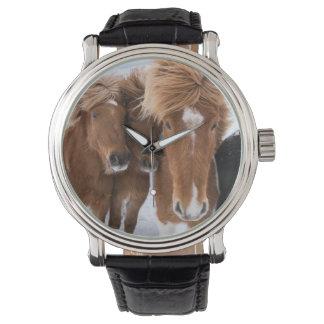 Les chevaux islandais poussent du nez, l'Islande Montres Bracelet