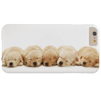 Les chiots du golden retriever coque iPhone 6 plus barely there