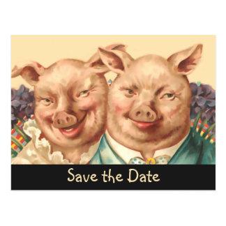 Les couples beaux de porc font gagner la date carte postale