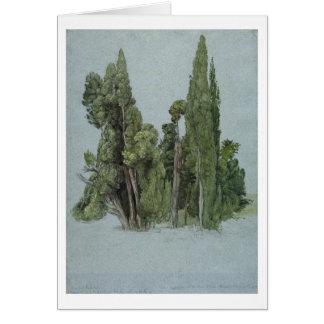 Les cyprès au d'Este de villa, Tivoli (la semaine Carte De Vœux