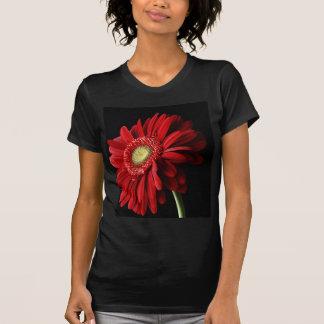 Les dames rouges de noir de marguerite de Gerber T-shirt