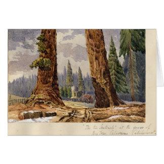 Les deux sentinelles, au verger de grands arbres carte de vœux