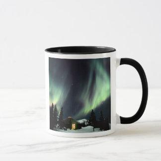 Les Etats-Unis, Alaska, Chena Hot Springs. Mug