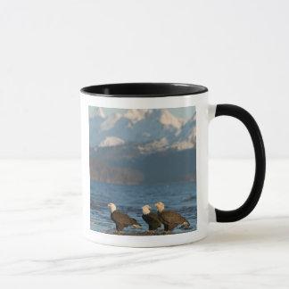 Les Etats-Unis, Alaska, Homer, Haliaeetus d'Eagles Mug