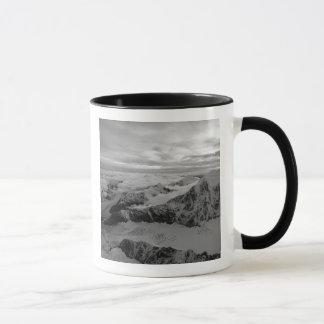 Les Etats-Unis, Alaska, parc national de Denali, Tasse