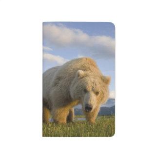 Les Etats-Unis, Alaska, parc national de Katmai, Carnet De Poche