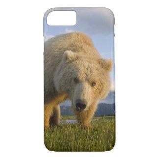 Les Etats-Unis, Alaska, parc national de Katmai, Coque iPhone 8/7
