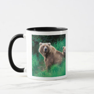 Les Etats-Unis, Alaska, parc national de Katmai, Mug