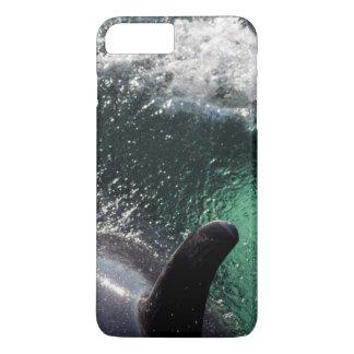 Les Etats-Unis, Alaska, ressorts de Tenakee. Orque Coque iPhone 8 Plus/7 Plus