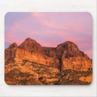 Les Etats-Unis, Arizona, réserve forestière de Tapis De Souris