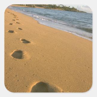 Les Etats-Unis, Hawaï, Kauai, Kapa'a, beachfront. Sticker Carré