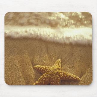 Les Etats-Unis, Hawaï, Maui, Maui, Kihei, étoile d Tapis De Souris