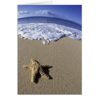 Les Etats-Unis, Hawaï, Maui, plage de Makena, Cartes