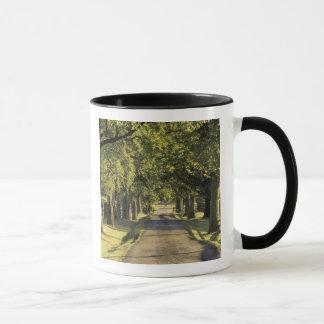 Les Etats-Unis, Kentucky, Lexington. Allée bordée Mug