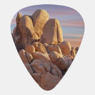 Les Etats-Unis, la Californie, parc national Onglet De Guitare
