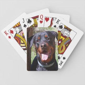 Les Etats-Unis, la Californie. Rottweiler par un Jeux De Cartes