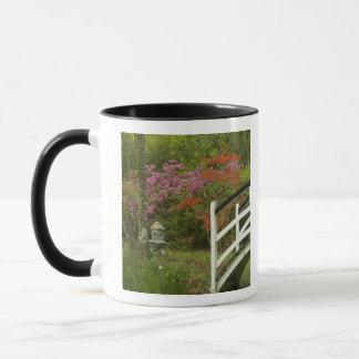 Les Etats-Unis ; La Caroline du Sud ; Charleston ; Mug