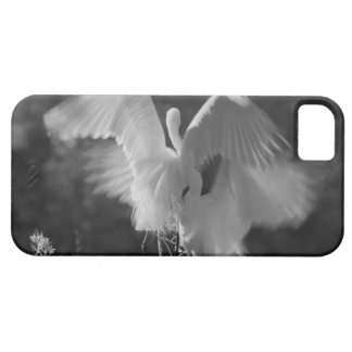 Les Etats-Unis, la Floride, grand infrarouge 3 de Coque iPhone 5 Case-Mate