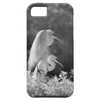Les Etats-Unis, la Floride, grand infrarouge de iPhone 5 Case