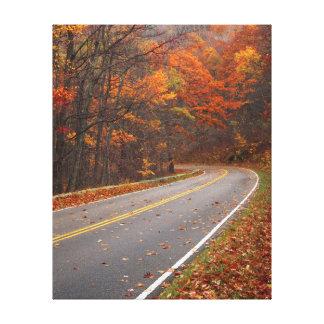 Les Etats-Unis, la Virginie, parc national de Toiles