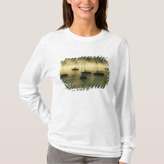 Les Etats-Unis, le Colorado, lac Dillon.  Le début T-shirt