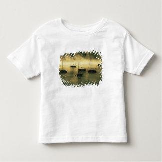 Les Etats-Unis, le Colorado, lac Dillon.  Le début T-shirt Pour Les Tous Petits