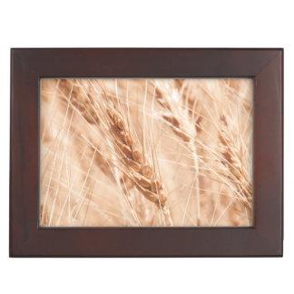 Les Etats-Unis, le Kansas, blé au temps de récolte Boîte À Souvenirs