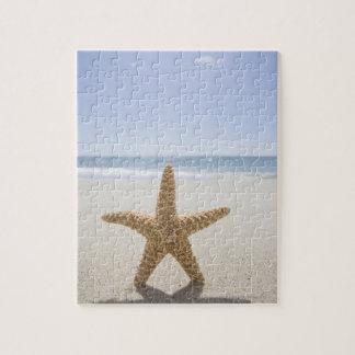 Les Etats-Unis, le Massachusetts, Cape Cod, Puzzle