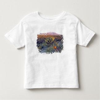 Les Etats-Unis, le Texas, grande courbure NP. Un T-shirt Pour Les Tous Petits