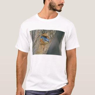 Les Etats-Unis, le Texas, Lipscomb. Oiseau bleu T-shirt