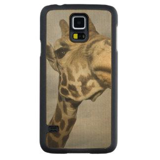 Les Etats-Unis, le Texas, région fossile de faune Coque Galaxy S5 En Érable