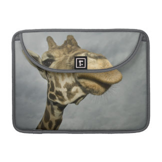 Les Etats-Unis, le Texas, région fossile de faune Poches Pour Macbook Pro
